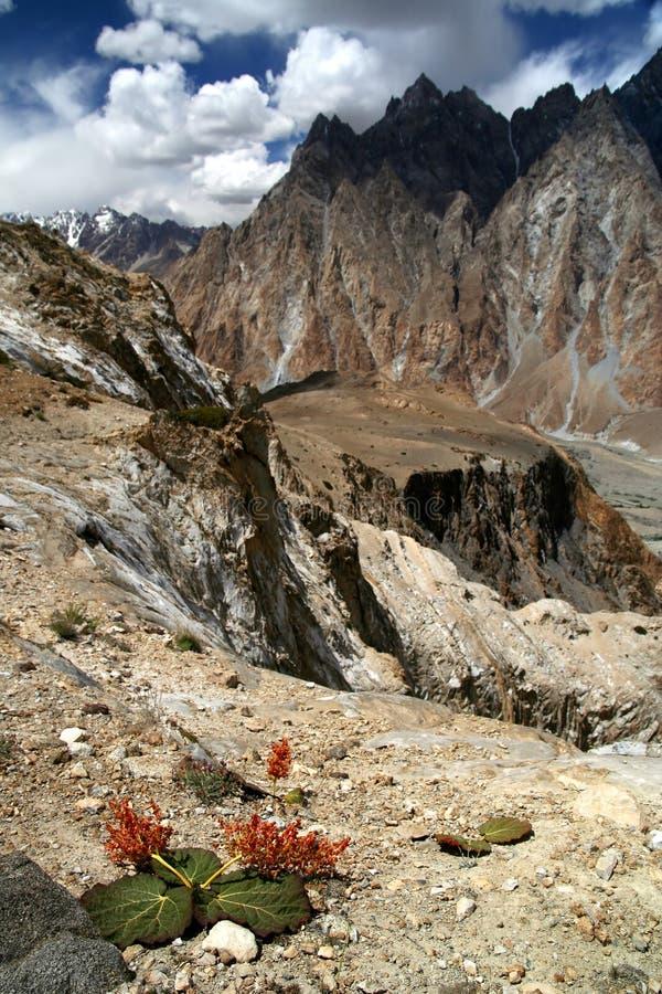 Montagnes de stupéfaction Karakorum image libre de droits