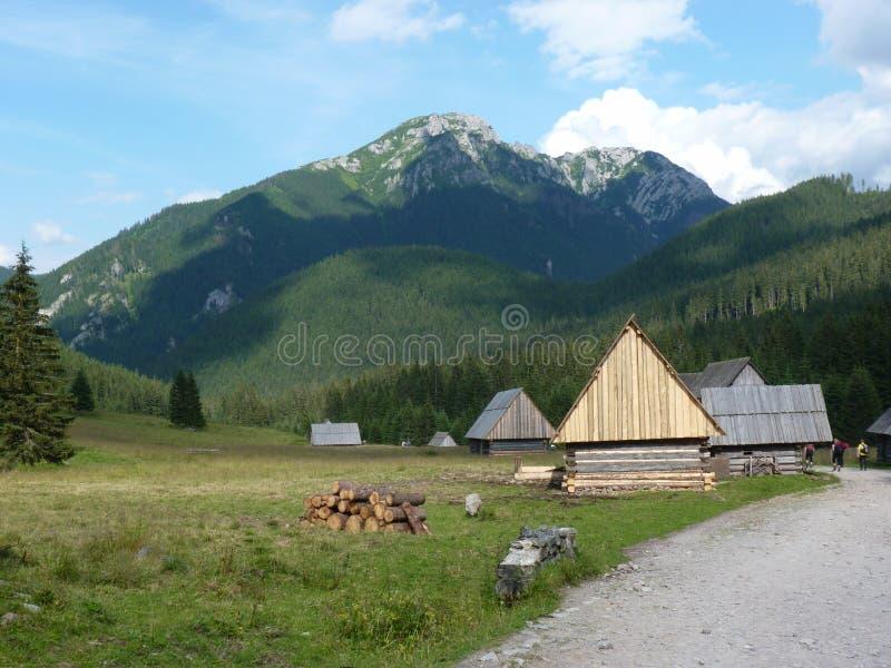 Download Montagnes de Tatra photo stock. Image du national, montagnes - 77158996