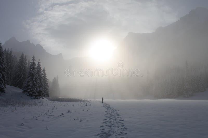 Montagnes de Tatra en hiver image stock