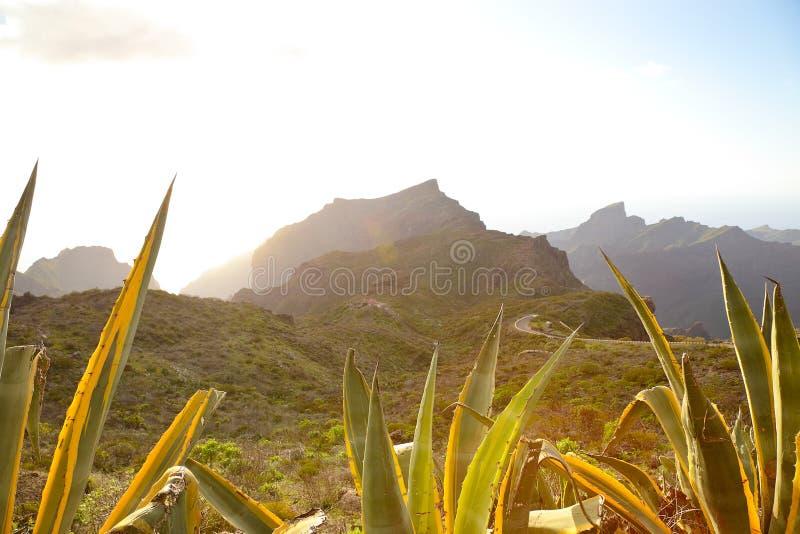 Montagnes de Teno photos stock