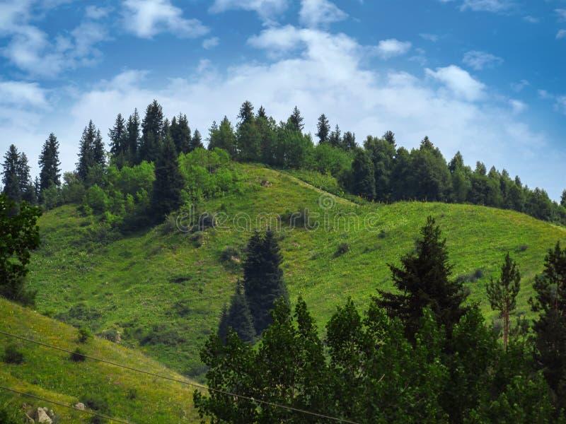 Montagnes de Tian Shan images libres de droits