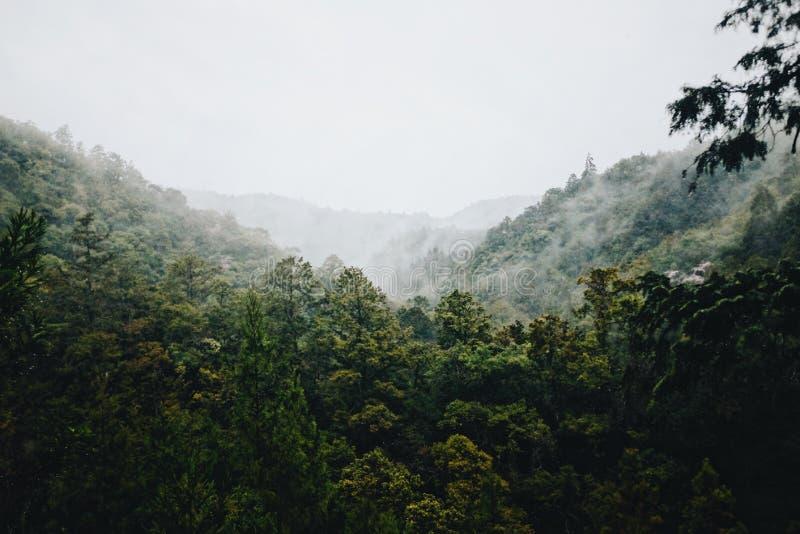 Montagnes du Japon photographie stock