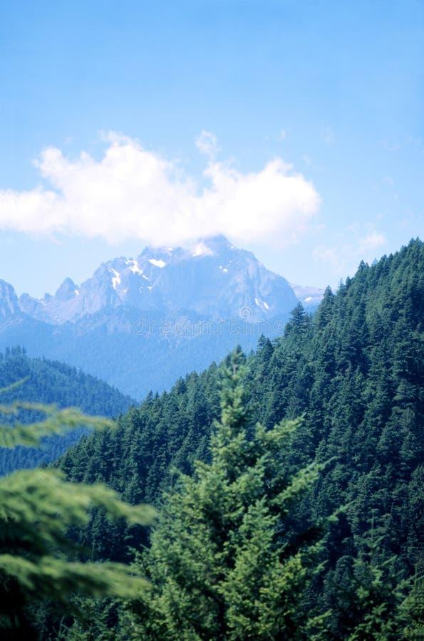 Montagnes du nord-ouest Pacifiques photographie stock libre de droits