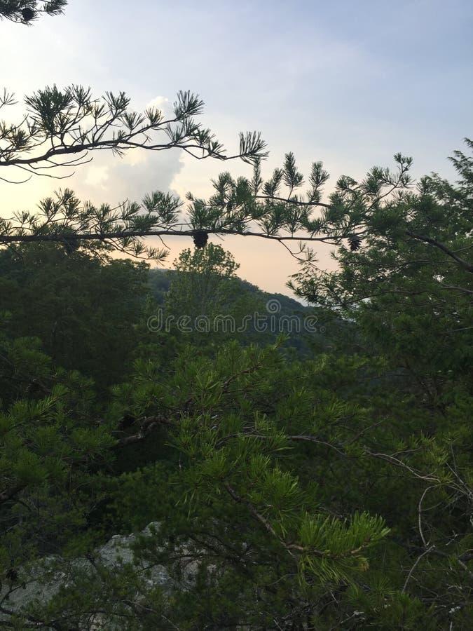 Montagnes du Tennessee photos stock
