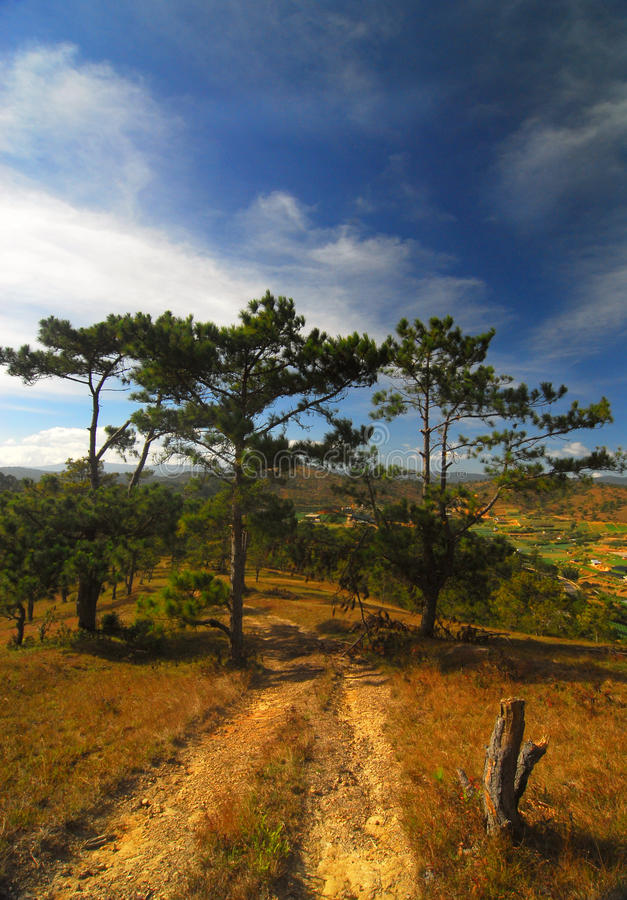 Montagnes du Vietnam, Dalat photo stock
