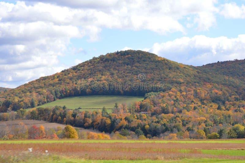 Montagnes en Pennsylvanie en automne un après-midi pluvieux photo libre de droits
