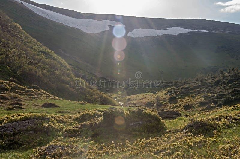 Montagnes ensoleillées abstraites et paysage de Bokeh photos libres de droits