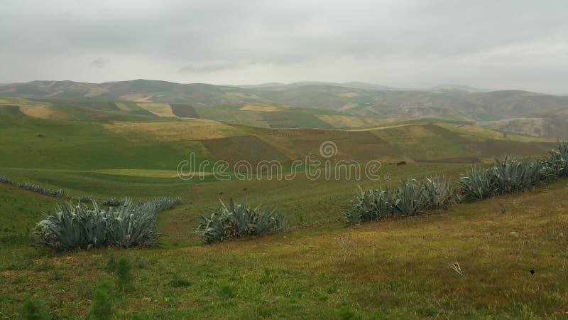Montagnes et fes de région de ville, Maroc photos stock