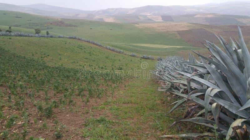 Montagnes et fes de région de ville, Maroc photos libres de droits