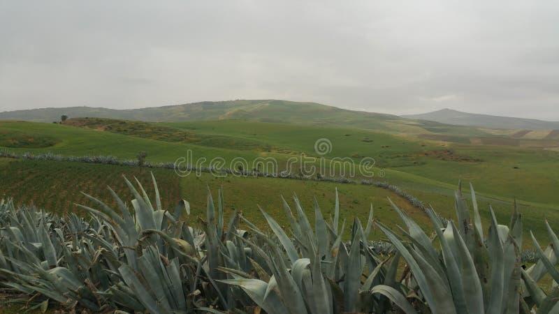 Montagnes et fes de région de ville, Maroc images stock