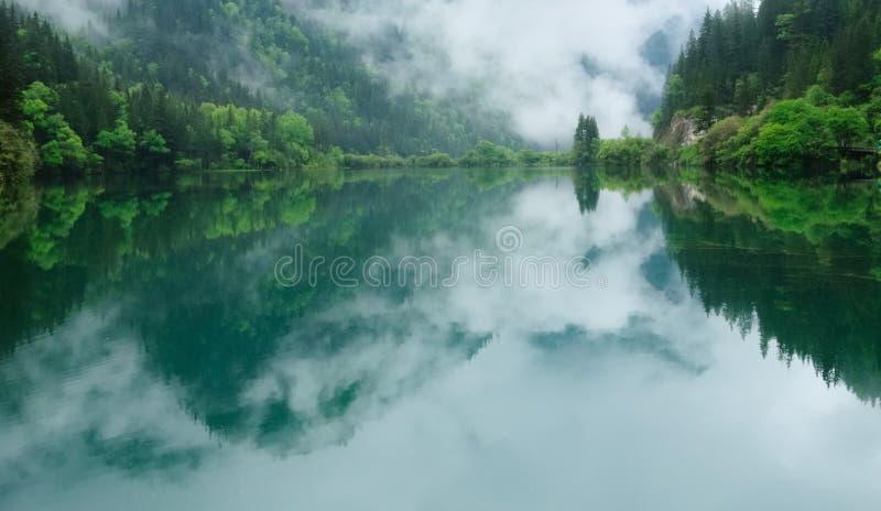 Montagnes et forêt autour de lac image libre de droits
