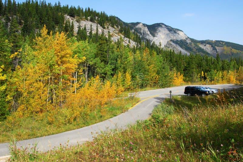 Montagnes et forêts de bord de la route photo stock