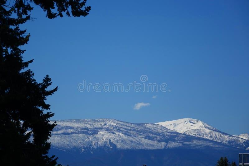 Montagnes et forêts - Missoula, Montana photos stock