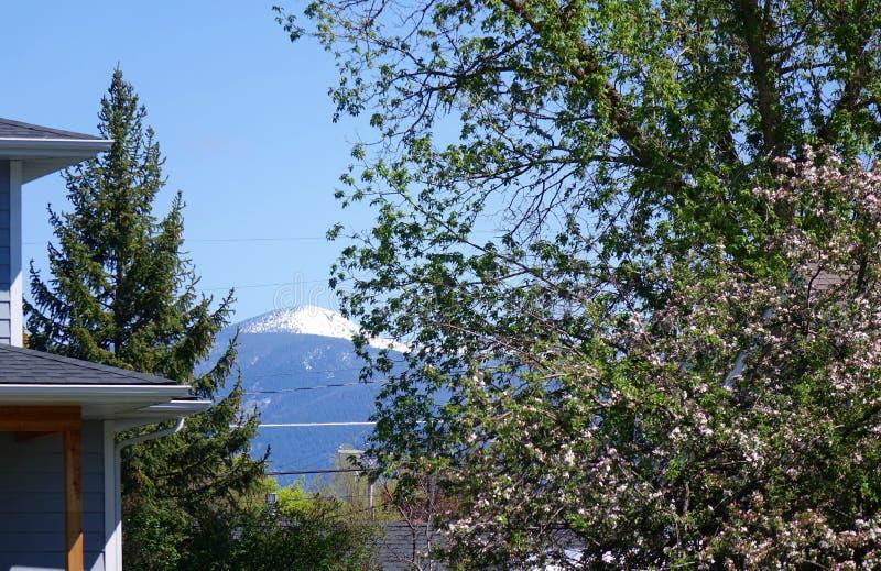 Montagnes et forêts - Missoula, Montana photographie stock