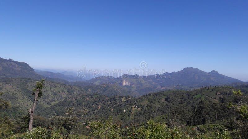 Montagnes et nature de Mountain View images libres de droits