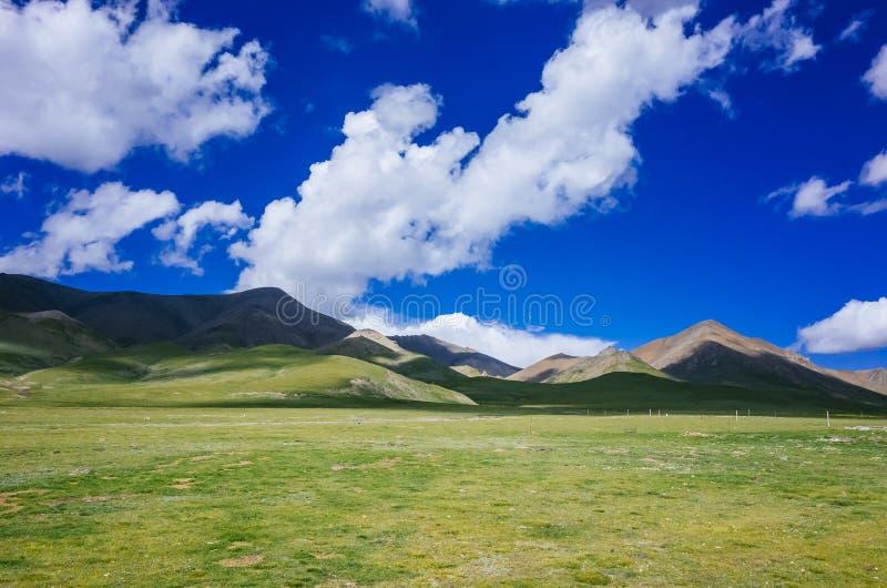 Montagnes et prés près de Qilian, le Qinghai, Chine photographie stock libre de droits