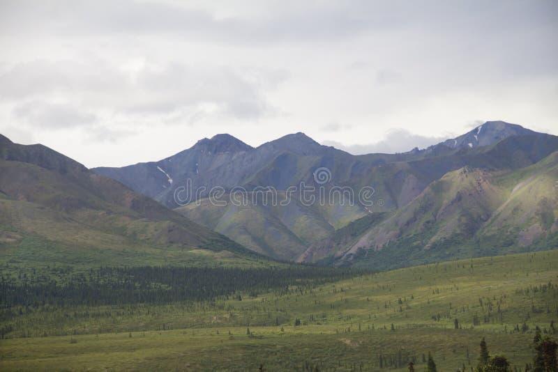 Montagnes et vallée de parc national de Denali images libres de droits