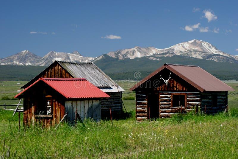 Montagnes Montana de Bitterroot photographie stock libre de droits