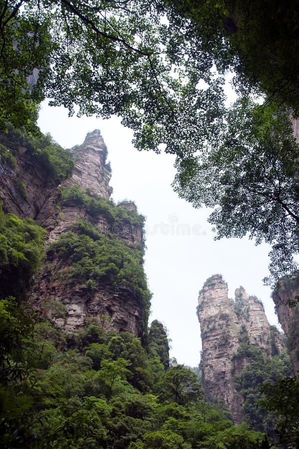 Montagnes mystérieuses Zhangjiajie, province de Hunan en Chine images libres de droits