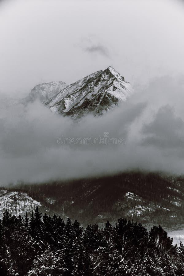 Montagnes noires et blanches en hiver images libres de droits