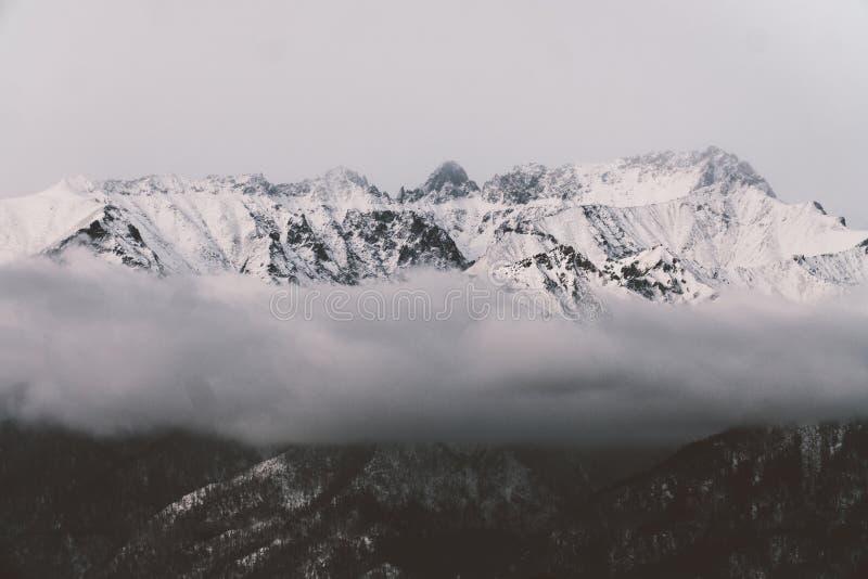 Montagnes noires et blanches en hiver image stock
