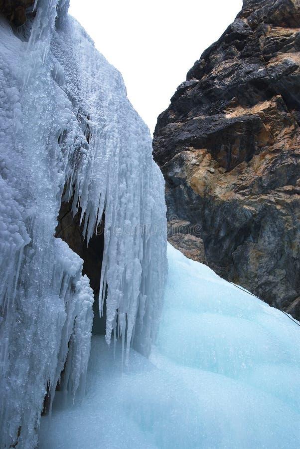 Montagnes orientales de Sayan. Altai. image stock