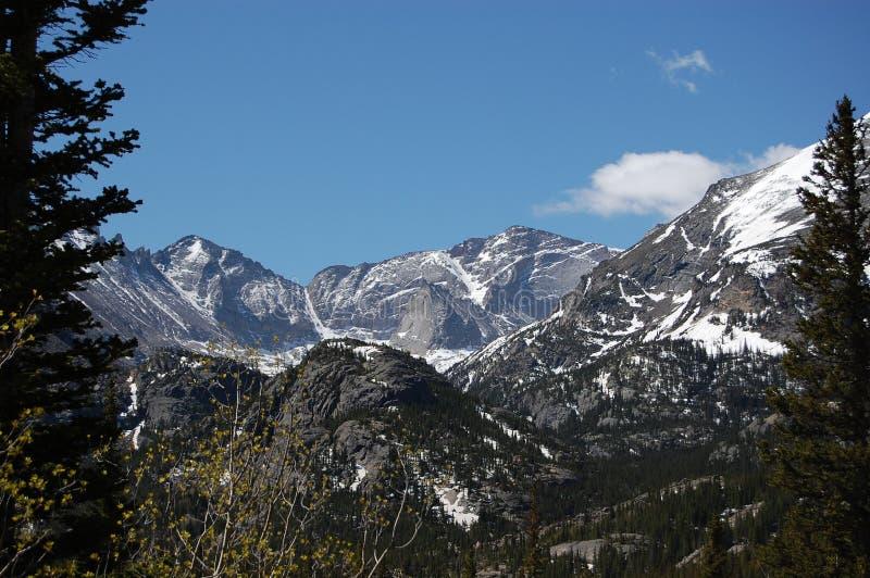 Montagnes par les arbres images libres de droits