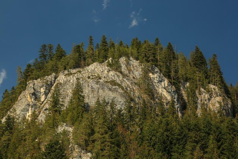 Montagnes rocheuses - Bicaz - Roumanie photographie stock libre de droits
