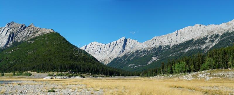 Montagnes rocheuses et pré photo libre de droits