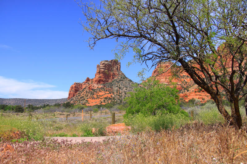 montagnes rouges de roche dans Sedona, Arizona photos stock