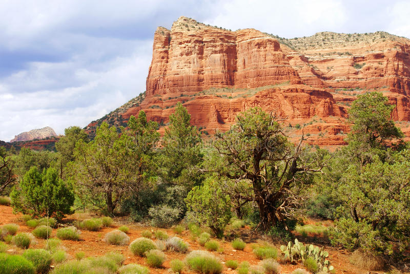 Montagnes rouges de Sedona photo libre de droits