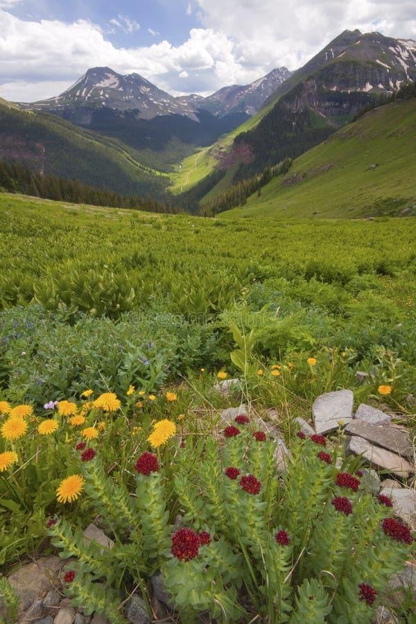 Montagnes spectaculaires et été du Colorado de vue images stock
