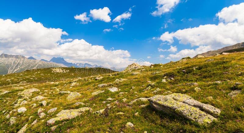 Montagnes suisses photo stock