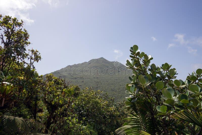 Montagnes sur l'île des Caraïbes de la Dominique photos stock