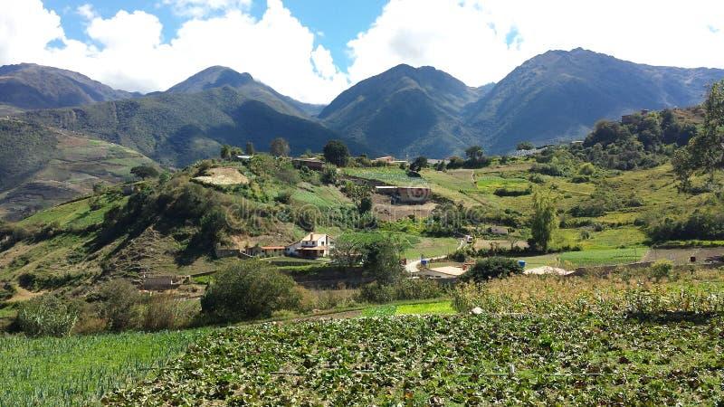 Montagnes Timotes Mérida photo libre de droits