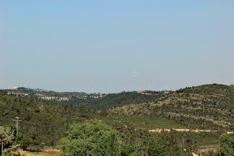 Montagnes vertes avec des règlements près de Jérusalem, Israël photo libre de droits
