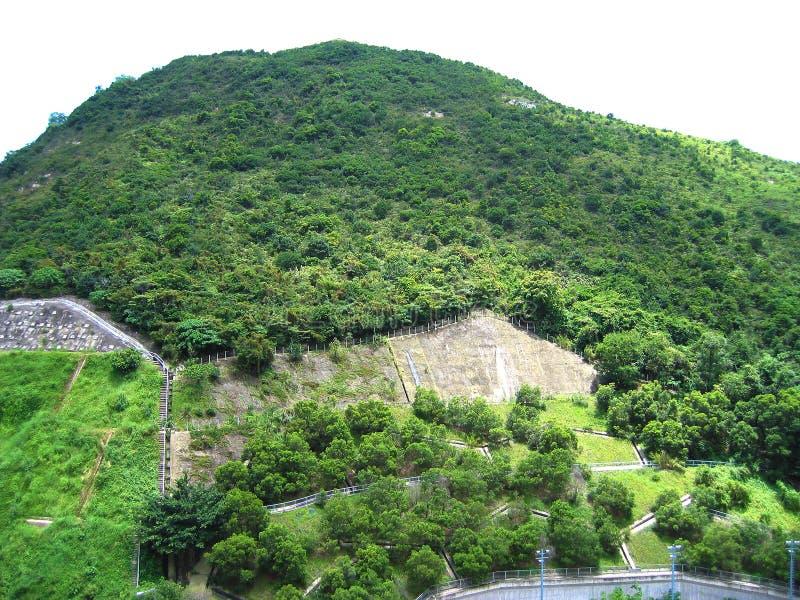 Montagnes vertes avec les arbres verts dans la zone résidentielle en Hong Kong images libres de droits