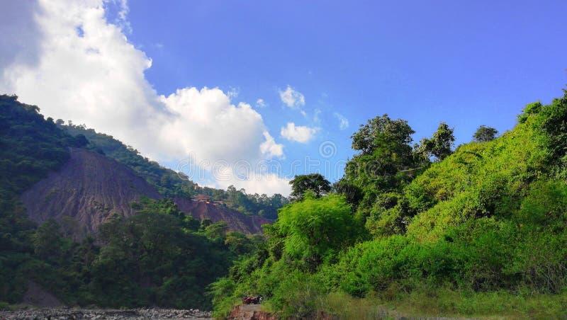 Montagnes vertes dans l'Inde photo libre de droits