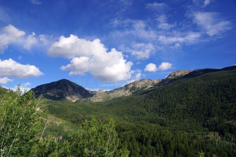 Montagnes vertes de passage de l'indépendance, le Colorado image stock