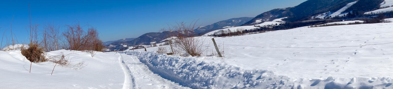 Montain panoramatik 免版税库存图片