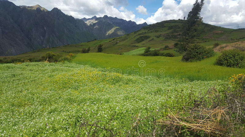 Montains Ancash Peru stockbilder