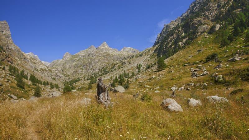 Montains del estrop, il parco di Mercantour, dipartimento del Alpes-Maritimes fotografia stock