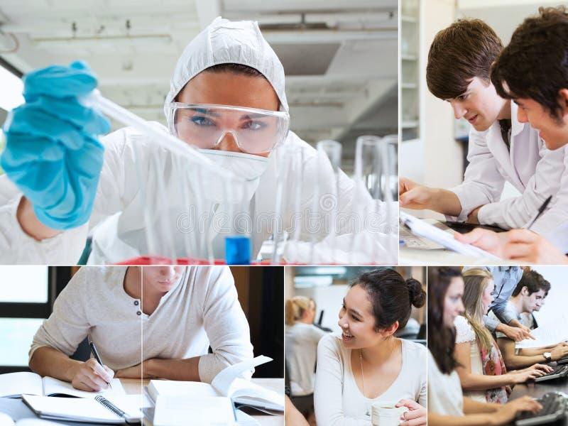 Montaje con los estudiantes que hacen química imagen de archivo