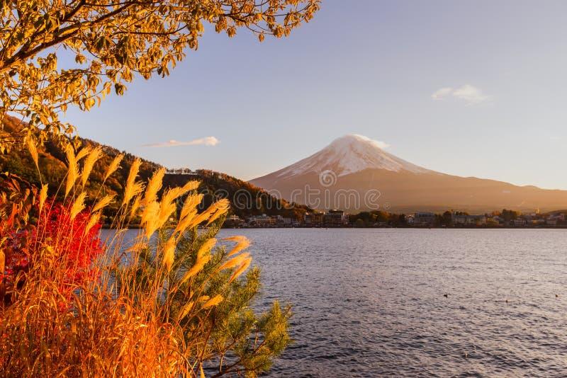 Montaje Fuji, Japón fotografía de archivo