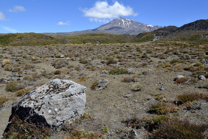 Download Montaje Ruapehu, Nueva Zelandia Foto de archivo - Imagen de terreno, claro: 44850134