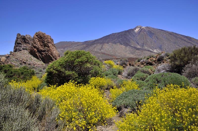 Montaje Teide en Canarias imagen de archivo libre de regalías