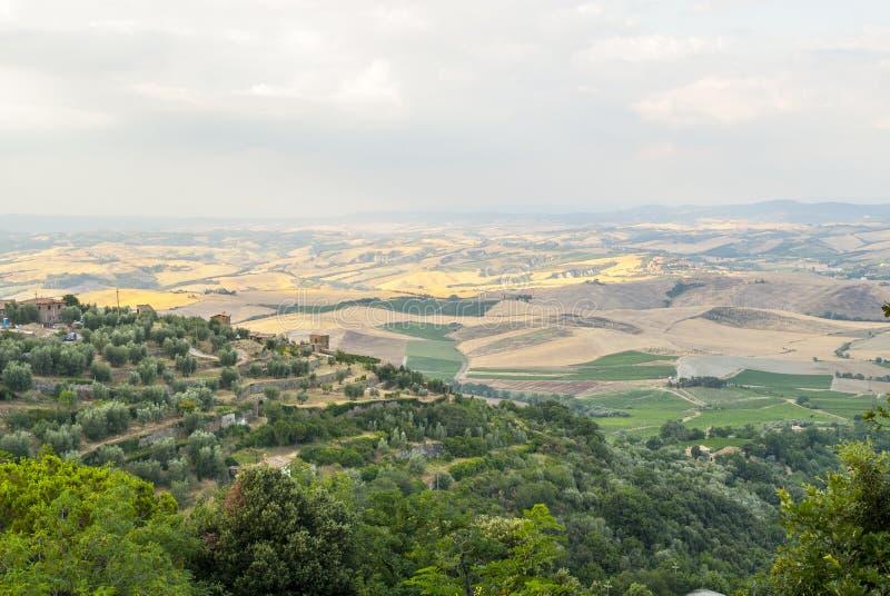 Montalcino (托斯卡纳) 库存图片