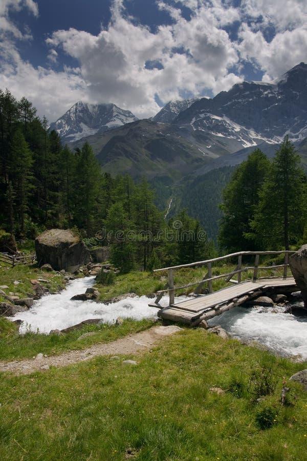 Montan@as del suizo del verano imagenes de archivo