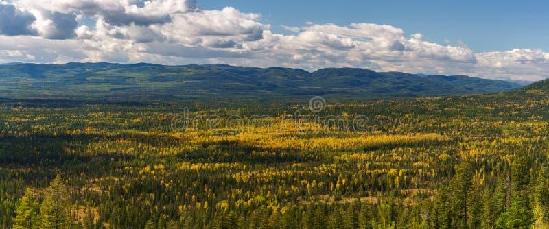 Montana Fall fotografía de archivo libre de regalías