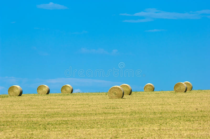 Montana landscape stock photos